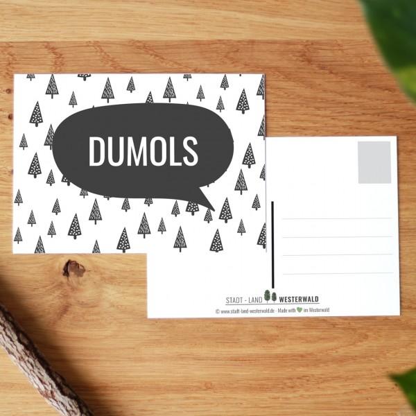 Dumols - Wäller Mundart auf Westerwälder Postkarte
